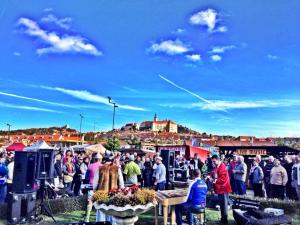 Gulas festival