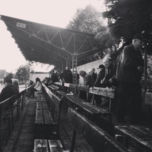 Palava crowd