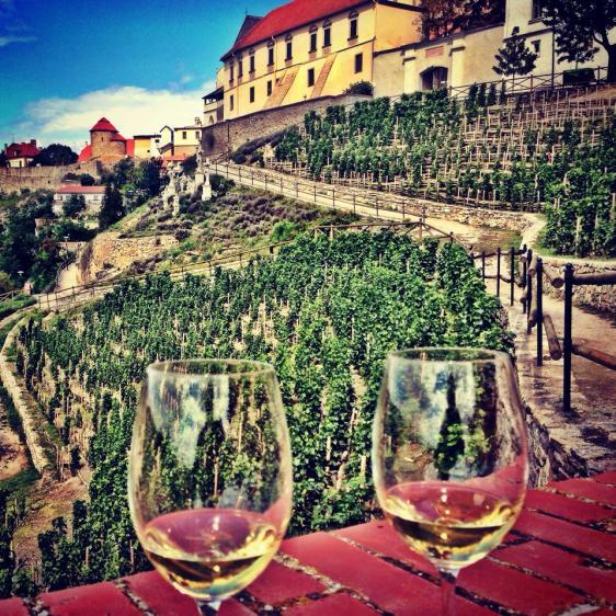Wine over Znojmo